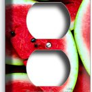 RED WATERMELON SLICES DUPLEX OUTLETS WALL PLATE COVER DINING ROOM KITCHEN DECOR