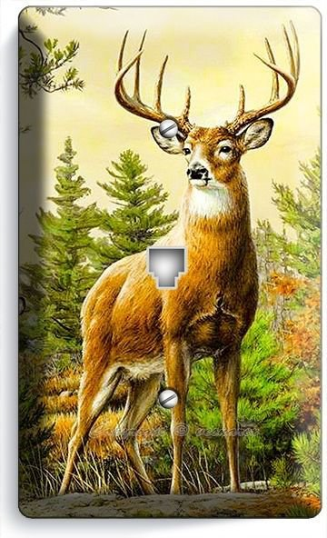 WILD WHITETAIL DEER BUCK ANTLERS PHONE TELEPHONE WALL PLATE COVER HOME ART DECOR