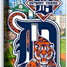 DETROIT TIGERS COMERICA STADIUM SINGLE LIGHT SWITCH WALL PLATE COVER BOYS ROOM