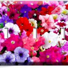MIXED PETUNIA FLOWERS COLORFUL GARDEN TRIPLE LIGHT SWITCH WALL PLATE COVER DECOR