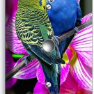 LOVE BIRDS PARROTS ORCHID FLOWERS LIGHT DIMMER CABLE WALL PLATE COVER HOME DECOR