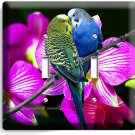 LOVE BIRDS PARROTS ORCHID FLOWERS DOUBLE LIGHTSWITCH WALL PLATE COVER HOME DECOR