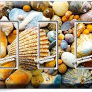 SEA SHELLS BEACH STONES TRIPLE GFI LIGHT SWITCH WALL PLATE BATHROOM SUMMER HOUSE