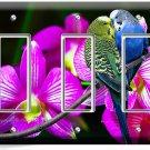 LOVE BIRDS PARROTS ORCHID FLOWERS TRIPLE GFI LIGHT SWITCH WALL PLATE COVER DECOR