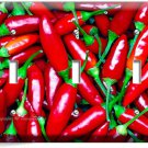 HOT RED CHILI PEPPERS TRIPLE LIGHT WALL PLATE COVER DINING KITCHEN PANTRY DECOR