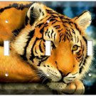 RED BENGAL TIGER BIG WILD CAT TRIPLE LIGHT SWITCH WALL PLATE COVER  ROOM DECOR