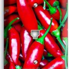 HOT RED CHILI PEPPERS PHONE TELEPHONE WALL PLATE COVER KITCHEN PANTRY HOME DECOR