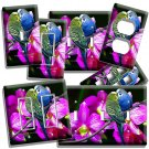 PARAKEET PARROTS LOVE BIRDS ORCHID FLOWERS LIGHT SWITCH WALL PLATE OUTLET DECOR
