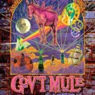 GOV'T MULE - ORPHEUM THEATRE,BOSTON,MA (HALLOWEEN)  10.31.08