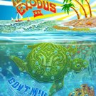 Gov't Mule's Island Exodus 3 3D Poster- Artists signed
