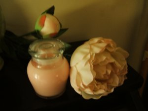 Honey Pot  5 oz. Soy Candle