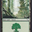 Forest 306 (MTG) - Near Mint