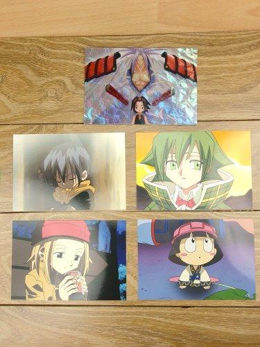 Japanese Anime Jump Shaman King Card x5 pages M012
