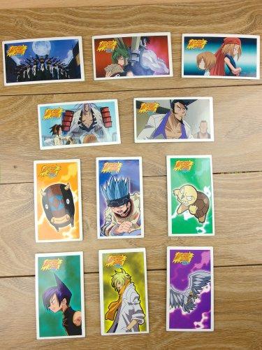 Japanese TOMY Shaman King Menko Megamen Card x11 pages N007