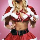 Holly Holiday Sexy Costume