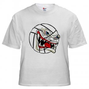 VICIOUS VOLLEYBALL | white tee