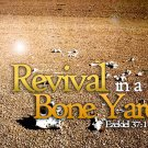 Revival In A Bone Yard Graphic Set