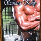FABULOUS KNIGHTS by Sahara Kelly