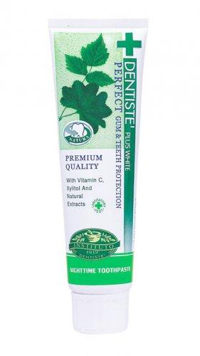 DENTISTE NIGHTTIME Toothpaste GUM TEETH Protection 100g