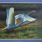 ART oil painting sale signed animals Swan 24""