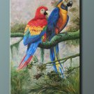 Oil painting On Canvas Art Sale 61x91cm-Parrots Animal