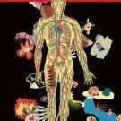Anatomie Narrative - Samplerman