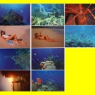 10 Lot US Virgin Islands Sexy Post Cards~SIGNED 2 Times
