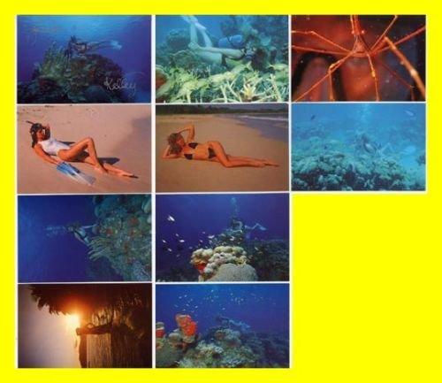 10 Underwater Amateur Bikini U.S. Virgin Islands Sexy Post Cards~SIGNED 2 Times