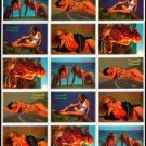 SWIMSUITS and MERMAIDS 15 sexy Promo Card Set~FREE SHIP Steve Woron/ Don Paresi