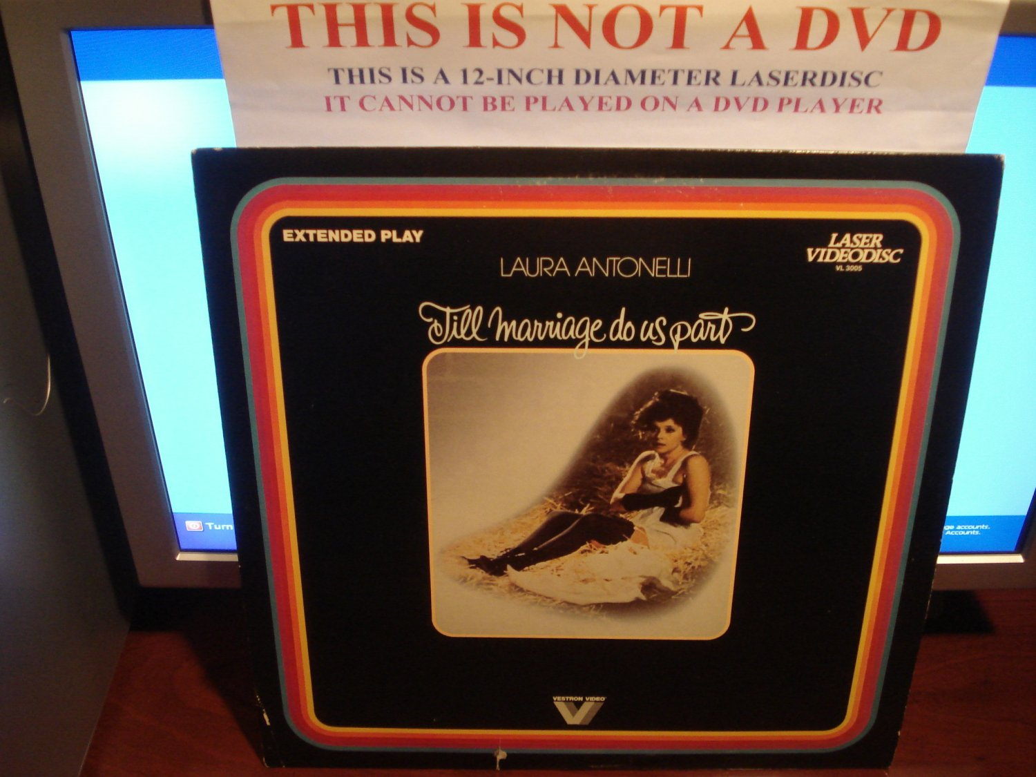 Laserdisc TILL MARRIAGE DO US PART (1979) Laura Antonelli FS Rare Classic LD