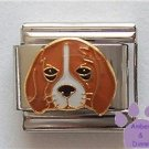 Adorable Beagle Puppy Dog Italian Charm