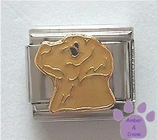 Beautiful Yellow Lab Dog Italian Charm - Sandy colour
