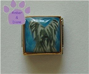 Skye Terrier or Briard Dog 9mm Custom Photo Italian Charm