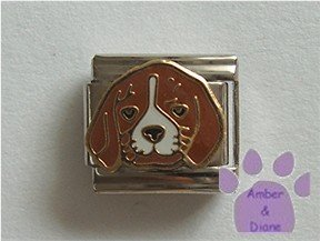 Cute Beagle Puppy Dog Italian Charm