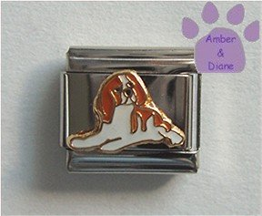 King Charles Cavalier Spaniel Dog Italian Charm Brown and White