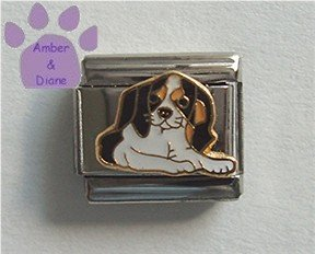 King Charles Cavalier Spaniel Dog Italian Charm Tri-colored