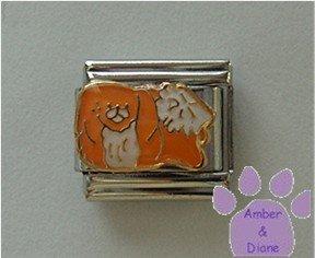 Pekingese Dog Italian Charm Peke Pup