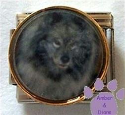 Gorgeous Gray Wolf Italian Charm