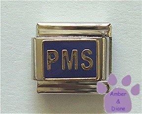 PMS Italian Charm on blue enamel background