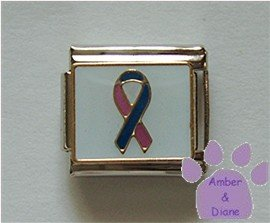 Pink and Blue Ribbon Italian Charm for Infant Loss Awareness