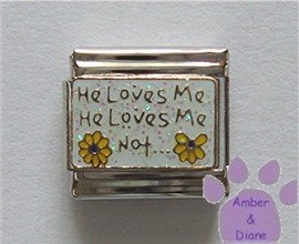 He Loves Me He Loves Me Not... Italian Charm with Daisies