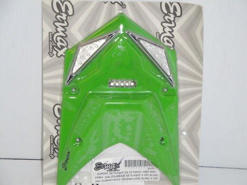 04 Kawasaki Ninja ZX10 Kawa Green Fender Eliminator