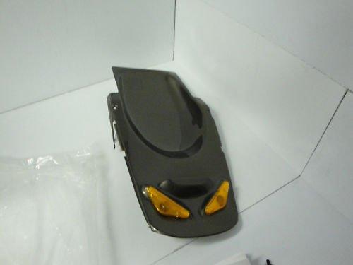 02/03 Honda CBR 954 Metal Gray Undertail