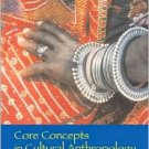 Core Concepts in Cultural Anthropology / Edition 2 by Robert Lavenda 0072818603