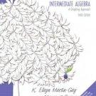 Intermediate Algebra: A Graphing Approach 3rd Ed. by Elayn Martin-Gay 0131469002