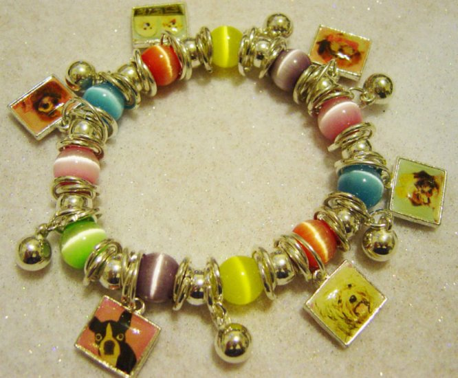 NEW DOGGIE CHARM Bracelet Multi Colorful-Beads & Charms