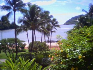 Trip for Two to Kauai ! Cheap Vacation!