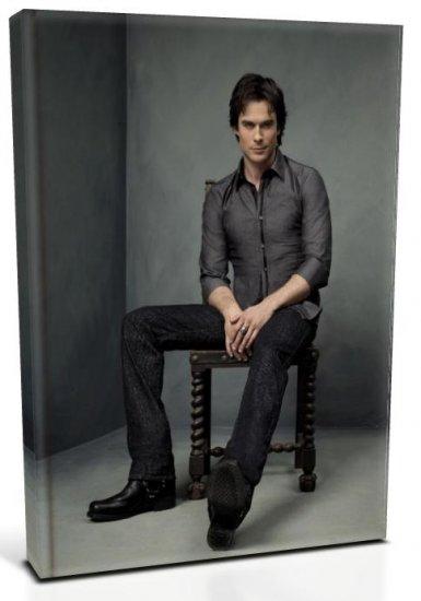 Vampire Diaries Damon Salvatore (1) Canvas Print 12 x 16 (Print Run Limited to 50)