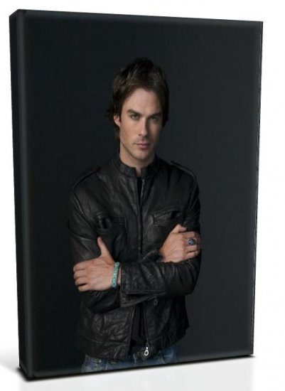 Vampire Diaries Damon Salvatore (4) Canvas Print 12 x 16 (Print Run Limited to 50)