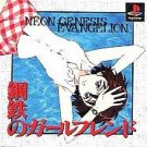 Neon Genesis Evangelion Girlfriend Of Steel Import NEW